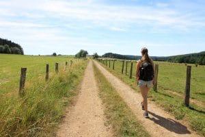 Chemoin de randonnée pédestre la Transardennaise