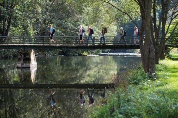 Wandelen: Escapardenne Eislek Trail
