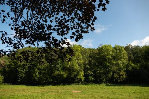 Hiking in the Ardennes: the Transfamenne