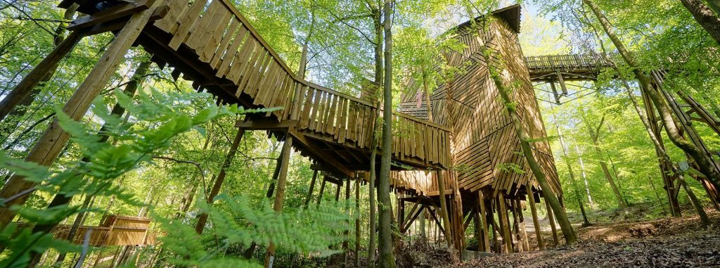 Parc Chlorophylle, La Roche-En-Ardenne - Les activités en famille en Ardennes